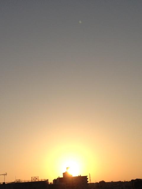 20121024-081313.jpg