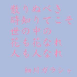 20130417-073912.jpg